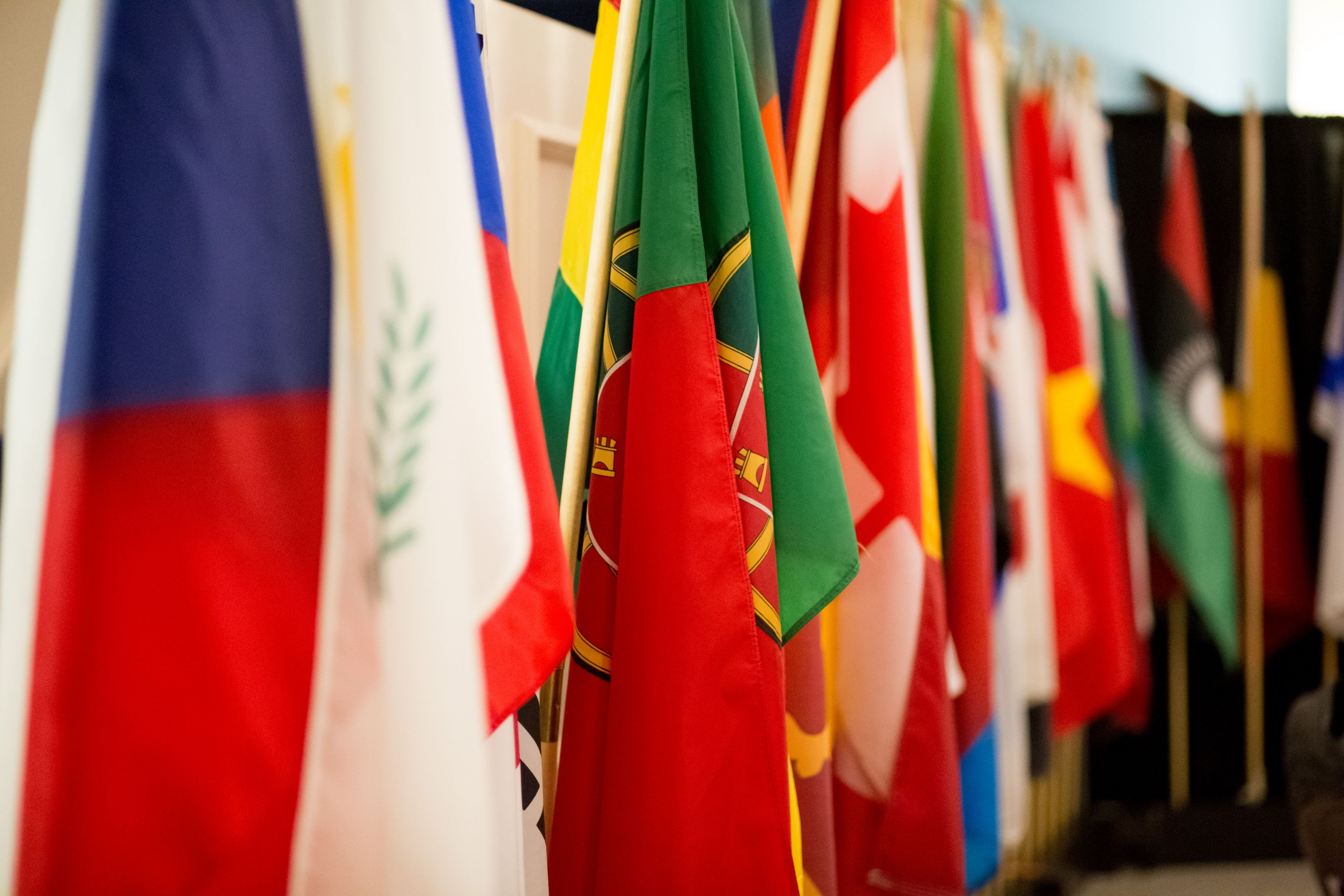 Minor In Global Studies
