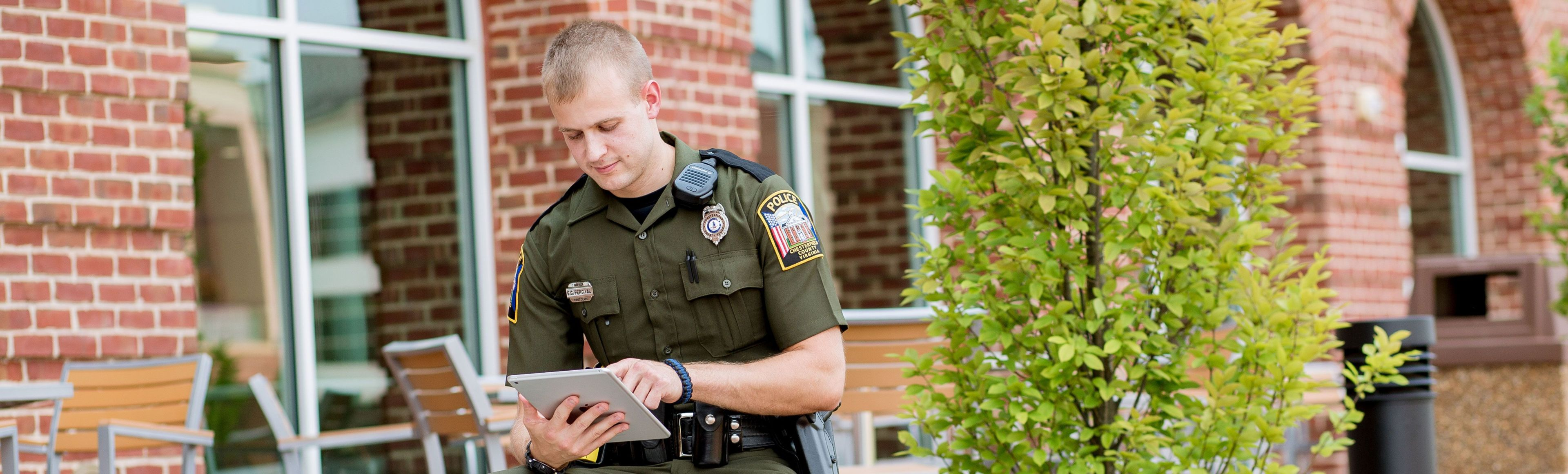 BS In Criminal Psychology At Liberty