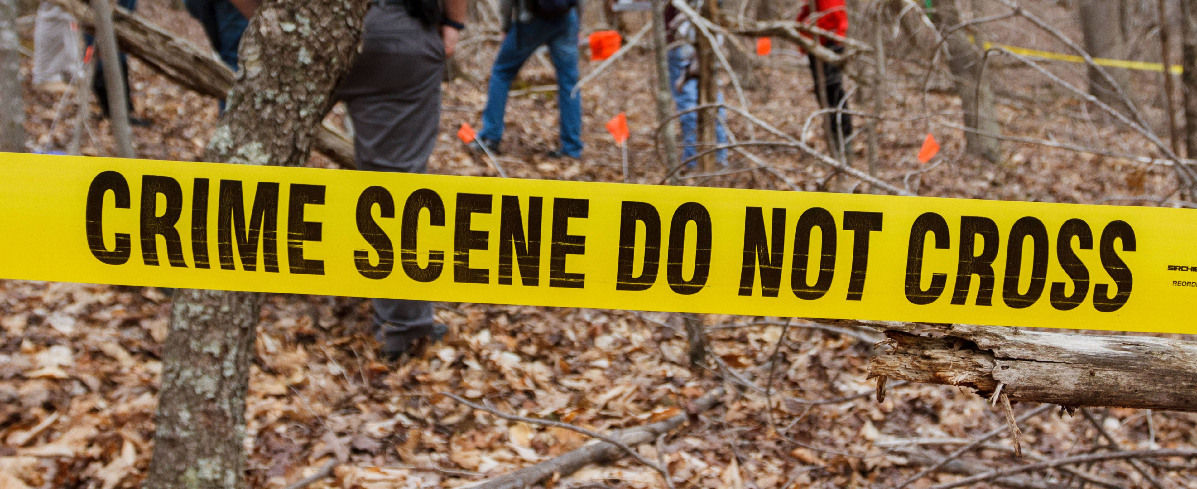 Master Of Science In Criminal Justice Forensic Psychology Liberty University Online Programs