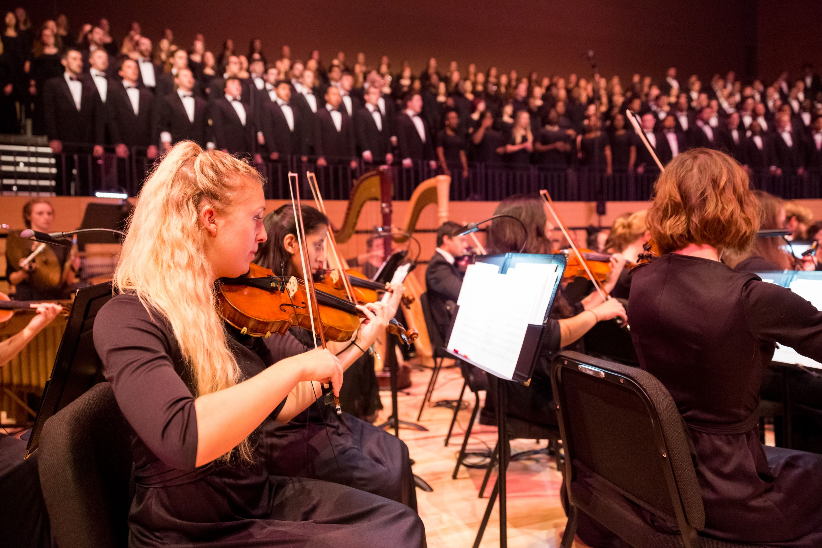 Bachelor Of Music In String Performance